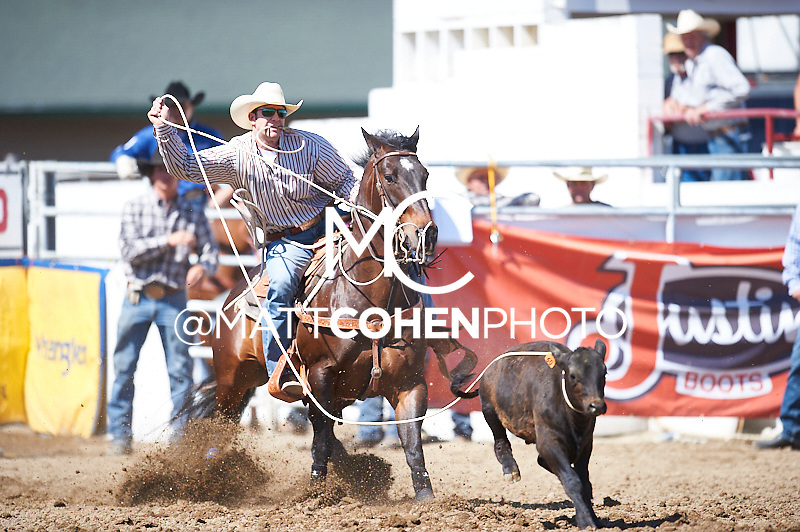 Tie-down roper Rhen Richard of Roosevelt, UT competes at the Redding Rodeo in Redding, CA<br /> <br /> <br /> UNEDITED LOW-RES PREVIEW<br /> <br /> <br /> File shown may be an unedited low resolution version used as a proof only. All prints are 100% guaranteed for quality. Sizes 8x10+ come with a version for personal social media. I am currently not selling downloads for commercial/brand use.