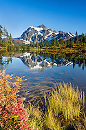 One of the most photographed mountain scenes in the world - Mount Shuksan reflected in Picture Lake in Washington State, USA's Mount Baker-Snoqualmie National Forest.  Photographed from a viewing platform at Picture Lake, this view of Shuksan is even better due to the fall color foliage of the blueberries and other lake side plants.  One of my more popular images.