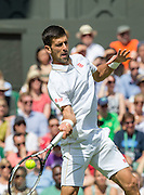 WIMBLEDON - UK - 27th June 2016: The Wimbledon Tennis Championships start at the All England Lawn Tennis Club, Wimbledon. S.E. London.<br /> <br /> Pic shows.;  Novak Djokovic (Serbia) plays James Ward (GB) watched by Pippa Middleton ( sister of Kate Middleton - HRH Duchess of Cambridge)<br /> ©Exclusivepix Media
