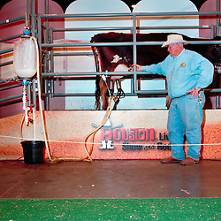 Houston, Texas - March 2010- A cow milking demonstration at the  Houston Rodeo.   Photo by Susana Raab