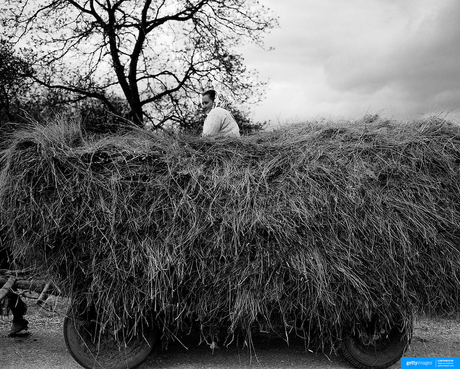 A lady rides on top of a cart full of hay in the Rural district of Maramures,  Romania. Photo Tim Clayton..Romania entered the European Economic Community in January 2007, signaling a fresh exodus of the work force as many Romanians fled the country in search of a better life. Sadly many have not found the employment sought and Romanian communities camped in European cities are making headlines for all the wrong reasons...In a nation recovering from communist rule from 1947 to 1989 and a decade of economic instability and decline that followed, it is estimated Romania has lost between 2.0 and 2.5 million of it's workforce since the end of communist rule. Considering Romanian's population is estimated at 22 million, this is about 10% of the Country's population...Life goes on as normal for those who have remained in Romania. In a country steeped in history and culture there has been little or no change in age old traditions, life is personified in the rural communities where a third of Romanian's population is employed in agriculture and primary production, one of the highest in Europe.