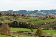 Landschaft, Felder bei Grafenau, Bayerischer Wald, Bayern, Deutschland | landscape, fields near Grafenau, Bavarian Forest, Bavaria, Germany