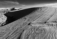 """I don't know if these """"tracks are naturally occurring or the result of a park ranger driving on the dunes, but they look cool."""