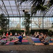 20200112 Greenhouse Yoga jpg2