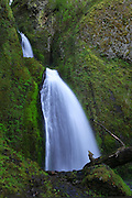 "The scenic Wahkeena Falls is one of many waterfalls located in the Columbia Gorge of Oregon. Wahkeena Falls, which drops 242 feet (73 metres), is named after the word that means ""most beautiful"" in Yakama Indian."