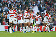 Japan players celebrate a try during the Rugby World Cup Pool B match between South Africa and Japan at the Community Stadium, Brighton and Hove, England on 19 September 2015. Photo by Phil Duncan.
