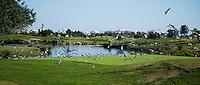 VILAMOURA - Algarve - Oceanico Victoria  Golfcourse, hole 18 met vogels,   COPYRIGHT KOEN SUYK