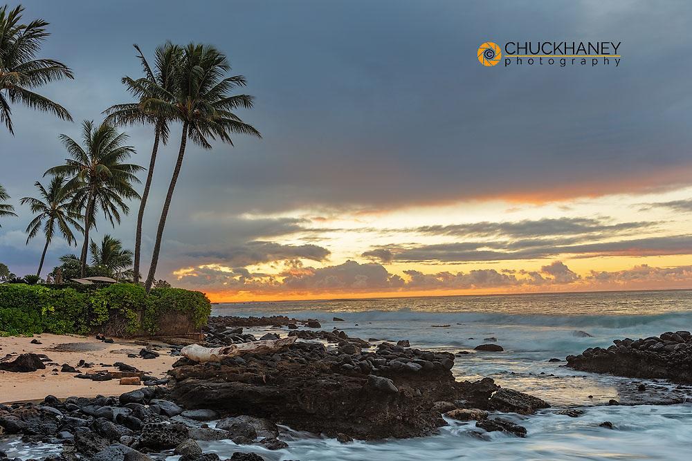 Palm trees over small beach at Kukuiula Bay in Kauai, Hawaii, USA