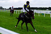 Inverarity ridden by Ray Dawson and trained by Frank Bishop ridden in the Bath.co.uk Classified Stakes - Mandatory by-line: Ryan Hiscott/JMP - 24/08/20 - HORSE RACING - Bath Racecourse - Bath, England - Bath Races
