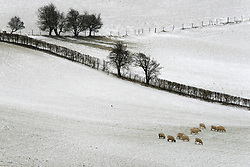 © Licensed to London News Pictures. 13/02/2021. Llanfihangel Nant Melan, Powys, Wales, UK. A bitterly cold landscape as strong south east winds and snow hit Mid Wales with temperatures minus 4.5 deg C and 'feels like' temperature around minus 10-15 deg C near Llanfihangel Nant Melan in Powys, Wales, UK. Photo credit: Graham M. Lawrence/LNP