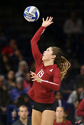 October 7, 2018 - Tucson, AZ, U.S. - TUCSON, AZ - OCTOBER 07: Washington State Cougars setter Ashley Brown (19) serves the ball during a college volleyball game between the Arizona Wildcats and the Washington State Cougars on October 07, 2018, at McKale Center in Tucson, AZ. Washington State defeated Arizona 3-2. (Photo by Jacob Snow/Icon Sportswire) (Credit Image: © Jacob Snow/Icon SMI via ZUMA Press)