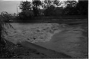 """Flooding at the Dodder..1986..26.08.1986..08.26.1986..28th August 1986..As a result of Hurricane Charly (Charlie) heavy overnight rainfall was the cause of severe flooding in the Donnybrook/Ballsbridge areas of Dublin. In a period of just 12 hours it was stated that 8 inches of rain had fallen. The Dodder,long regarded as a """"Flashy"""" river, burst its banks and caused great hardship to families in the 300 or so homes which were flooded. Council workers and the Fire Brigades did their best to try and alleviate some of the problems by removing debris and pumping out some of the homes affected..Note: """"Flashy"""" is a term given to a river which is prone to flooding as a result of heavy or sustained rainfall...Image shows the torrent going over the weir just before the road bridge in Ballsbridge,Dublin."""