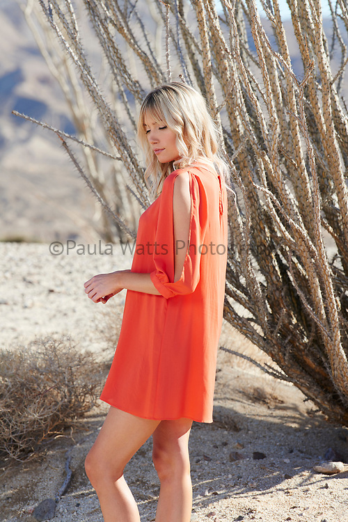 Professional photoshoot for designer label with model in California