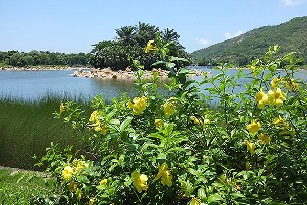 Inspiration Lake, Lantau Island, Hong Kong