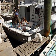 Vakantie Miami Amerika, vissersboten en Linda Janssen mag de pelikanen vis voeren in de haven van Key Largo Florida
