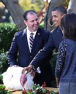 President Barack Obama pats  the Thankgiving Turkey named Apple, in the Rose Garden of the White House on November 24, 2010. First daughter Malia is on the right  and  Yubert Envia, the Chairman of the National Turkey Federation   Photo by Dennis Brack