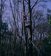 A3A9TD Teenage girl leaping to catch high wire trapeze on school outdoor activity adventure training course