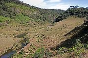 View of Horton's Plains National Park showing upland grassland and montane forest vegetation and the Kelani River