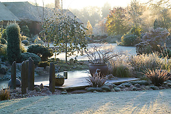 Early sunlight over the frozen pond and deck on a frosty winter's morning. Slate posts and a container of Prunus incisa 'Kojo-no-mai'. Design: John Massey, Ashwood Nurseries