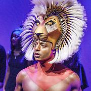 NLD/Amsterdam/20160216 - Musical The Lion King is terug!, Simba