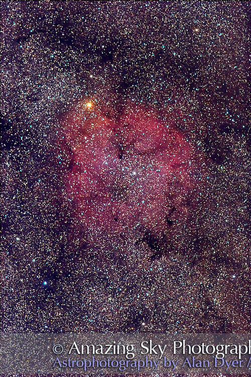 IC 1396 nebulosity and Mu Cephei with Canon 200mm L-II Lens at f/3.2. Stack of two exposures at 8 minutes each @ ISO 400. Tracked but not guided. Some chromatic aberration visible (lens slightly out of focus? from temp shift?) Some Dec trailing as well.