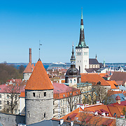 Tallinn red roofs, towers and Oleviste church