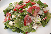 Green salad with lettuce, rocket (Arugula) tomatoes and cheese