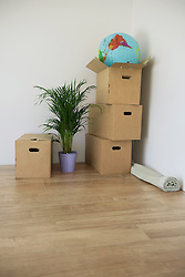 Symbol moving in boxes empty room plant