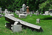 Green Lawn Cemetery is a park and bird watchers paradise. Organized as a non-profit association in 1848, Green Lawn represents a vast treasure for Columbus historians and bird watchers, and a sanctuary for those seeking a peaceful interlude.
