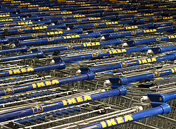 """Embargoed to 0001 Friday November 02 File photo dated 12/02/07 of Ikea trolleys. The Swedish flat pack furniture giant has posted rising full year sales as more Brits spent money on home improvements, despite a """"tough economic environment""""."""