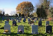 Headstones graveyard of village parish church at Reydon, Suffolk, EnglandSuffolk, England, UK
