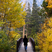 Fall colors frame a bridge over the Twin Lakes in Mammoth on a chilly, Fall day.