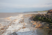 Erosional coastline with tilted sedimentary rock wave cut platform, Watchet, Somerset, England