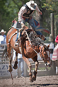 A cowboy and bronco go airborne at the Augusta Rodeo in Montana. Missoula Photographer, Missoula Photographers, Montana Pictures, Montana Photos, Photos of Montana