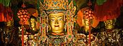China, Tibet, Lhasa, Palhalupuk temple, Shakyamuni Buddha center