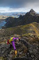 Female hikers climb steep rocky ridge towards Østhimmeltind mountain peak, Vestvågøy, Lofoten Islands, Norway