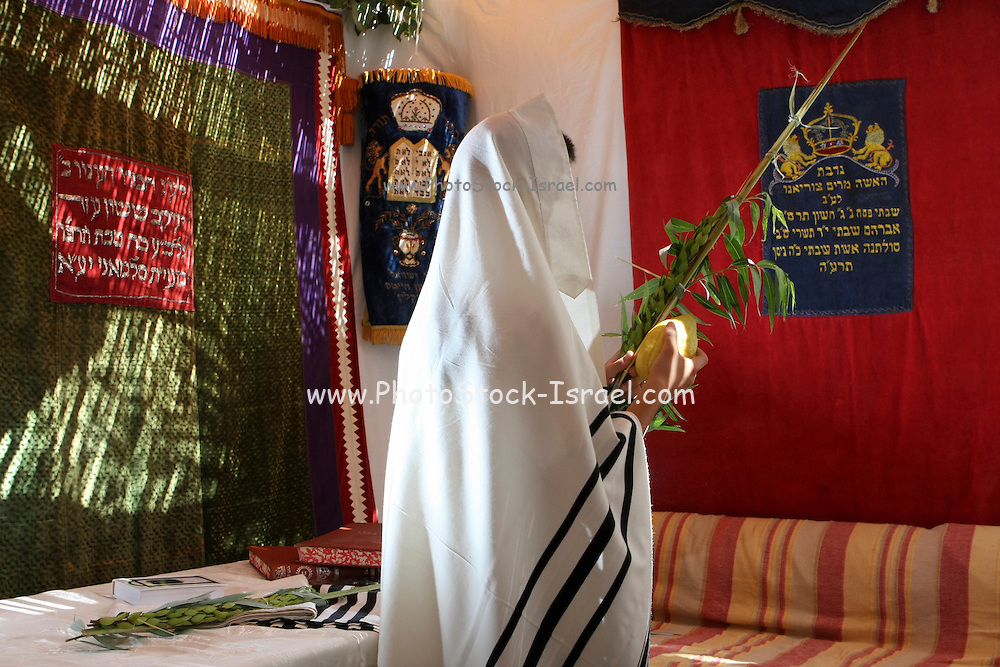 Interior of a Sukkah during Sukkoth A man wrapped in a tallith holding the four species