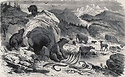 An ideal European landscape in the Quaternary epoch with bears, elks and mammoths. Wood engraving By: Eugene Meunier, Eduard Riou