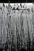 Brandenburg, GERMANY,  Sat morning crews boating in preparation for the morning heats at the 2010 Deutsches Meisterschaftsrudern, und DRV-Juniorentest 2010. at the Beetzsee in Brandenburg an der Havel on Saturday - 17/04/2010   [Mandatory credit: Peter Spurrier Intersport Images] 2010 German Small Boats National Selection Regatta and Junior test regatta..