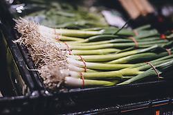 THEMENBILD - Frühlingszwiebel in einem Supermarkt während der Coronavirus Pandemie, aufgenommen am 04. April 2020, Österreich // Spring onion in a supermarket during the coronavirus pandemic, Austria on 2020/04/04. EXPA Pictures © 2020, PhotoCredit: EXPA/ JFK