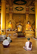 Worshippers at the Shwedagon pagoda, the most sacred pagoda in the country, in the capital of Yangon (Rangoon), Myanmar