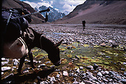Matthieu and Mareile Paley trekking with a donkey named Clementine over 5 high passes across the Hindukush, between Pakistan and Afghanistan.