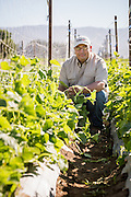 Juan Gonzales is part of the ALBA farm incubator program in Salinas, CA.