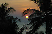 Sunset through the palm tree's on Kai Bay beach, Koh Chang, Thailand.