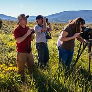 Searching for wildlife in Grand Teton National Park on a Teton Science Schools wildlife tour.(Greg Peck, Matthew Bart, Sean Baker, Maura Bushior, Katie-Cloe Stock, Tracy Logan, Paul Maddex, Lead Guide Dawson)