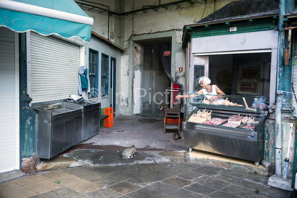 A butcher feeds scraps to the market cats at the Mercado do Bolhão, Porto, Portugal. One of the most emblematic buildings of the city with wrought iron architecture over two floors, the market dates back to 1839.