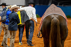 Fonck Bernard, Poels Ann, BEL, What A Wave<br /> World Equestrian Games - Tryon 2018<br /> © Hippo Foto - Dirk Caremans<br /> 15/09/2018