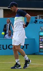 June 19, 2018 - United Kingdom - Andy Murray (GBR) in pain during Fever-Tree Championships 1st Round match between Nick Kyrgios (AUS) against Andy Murray (GBR) at The Queen's Club, London. (Credit Image: © Kieran Galvin/NurPhoto via ZUMA Press)