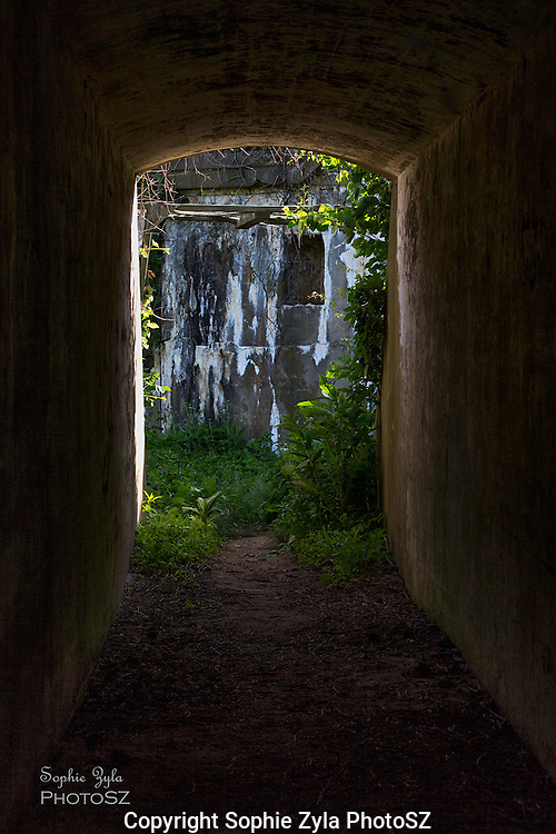 Follow the tunnel to...