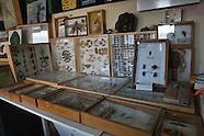 Basra University's Natural History Department